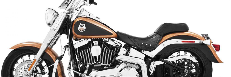 Best True Dual Exhaust For Harley